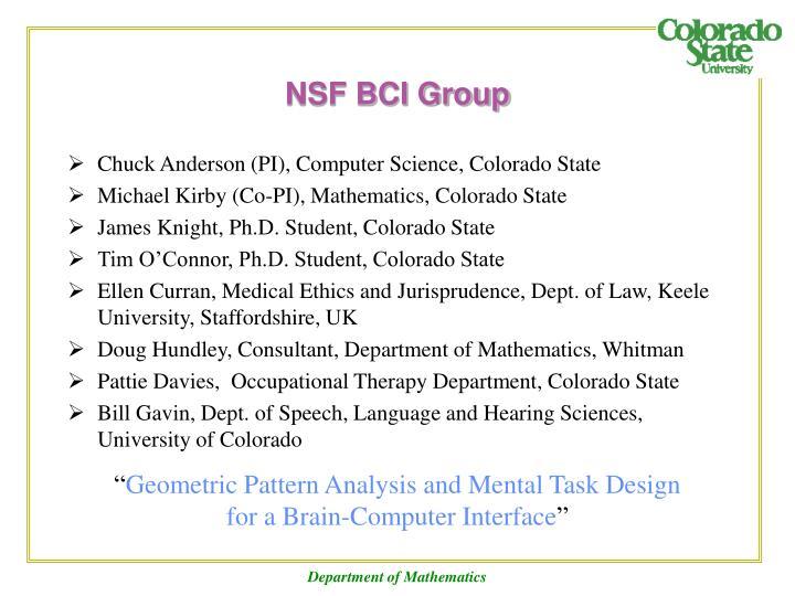Nsf bci group