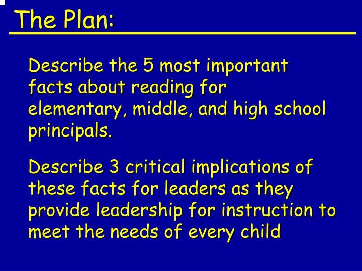 The Plan: