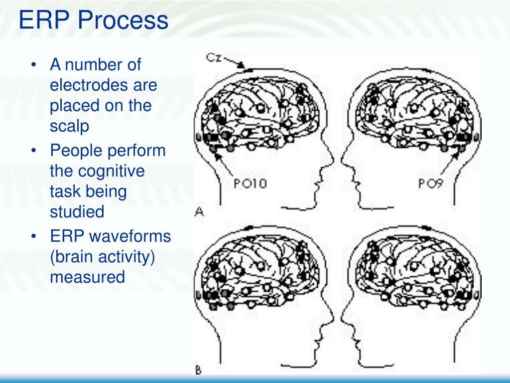 ERP Process