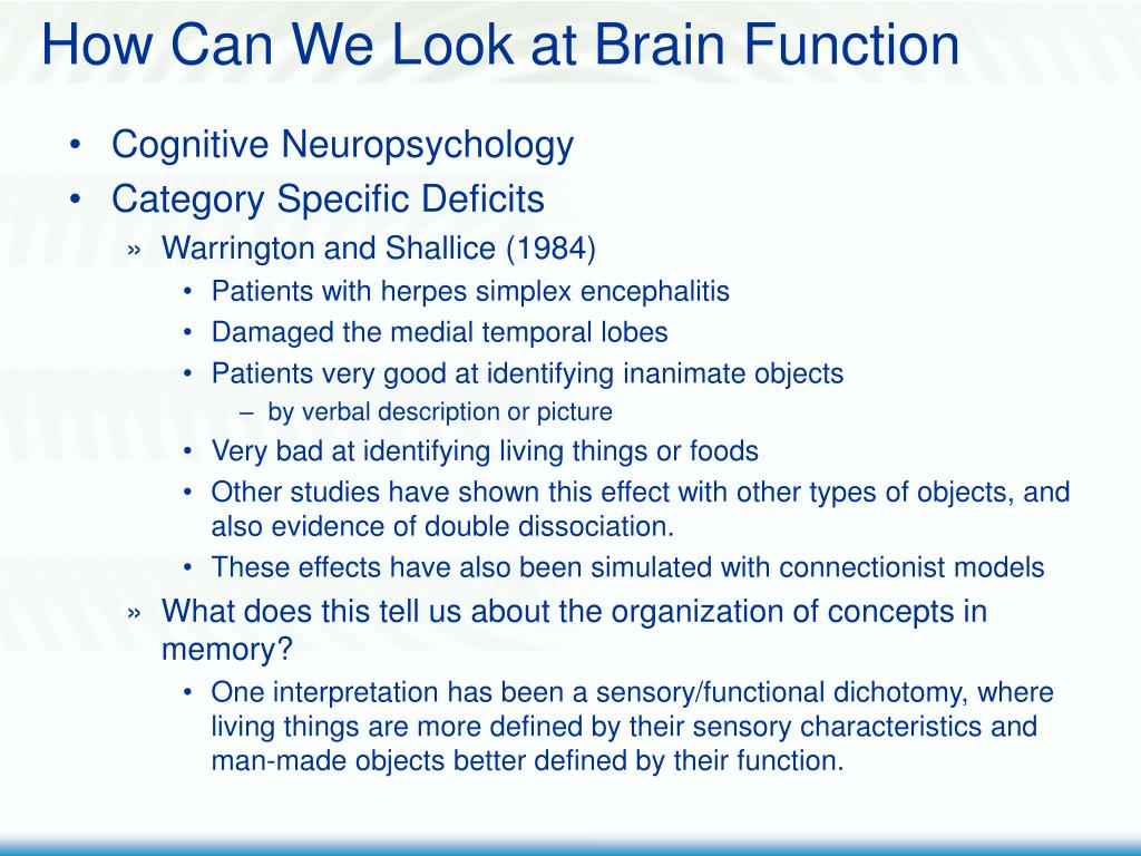 How Can We Look at Brain Function