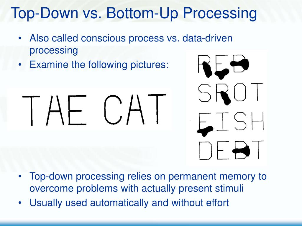 Top-Down vs. Bottom-Up Processing
