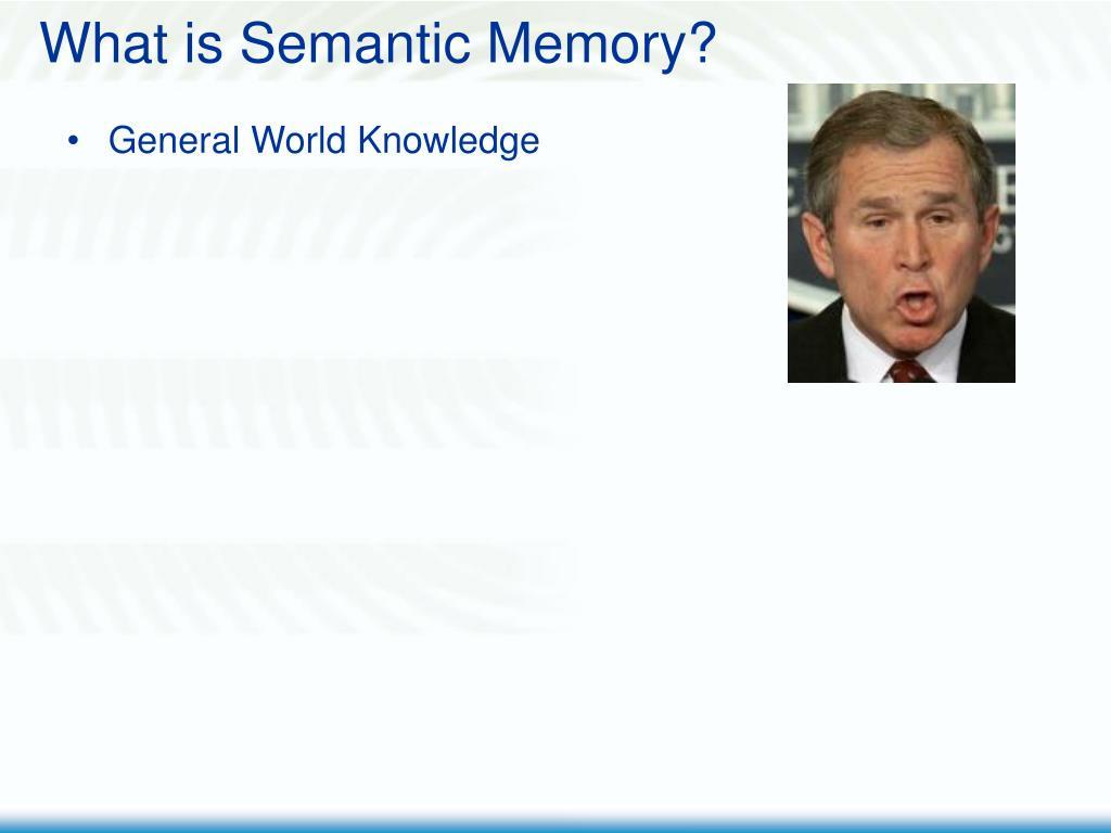 What is Semantic Memory?
