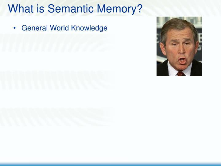 What is semantic memory3