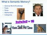 what is semantic memory7