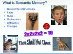 what is semantic memory8