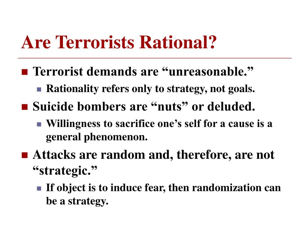 Are Terrorists Rational?