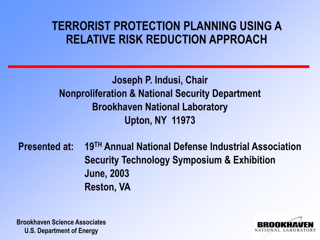 terrorist protection planning using a relative risk reduction approach l.