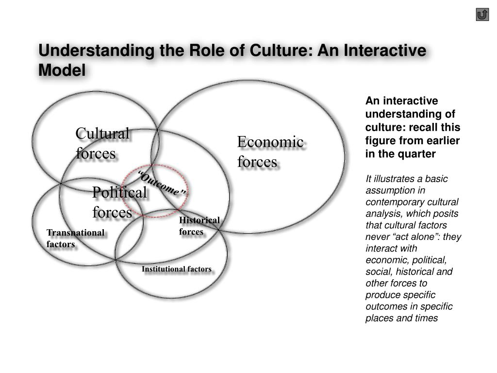Understanding the Role of Culture: An Interactive Model
