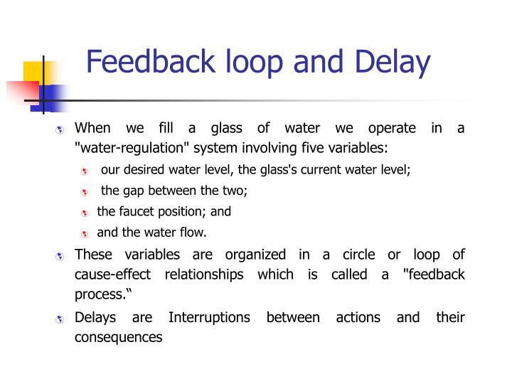Feedback loop and Delay