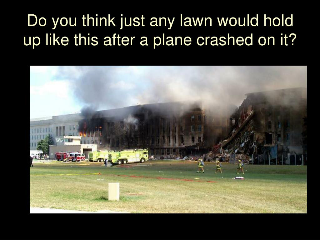 Do you think just any lawn would hold up like this after a plane crashed on it?