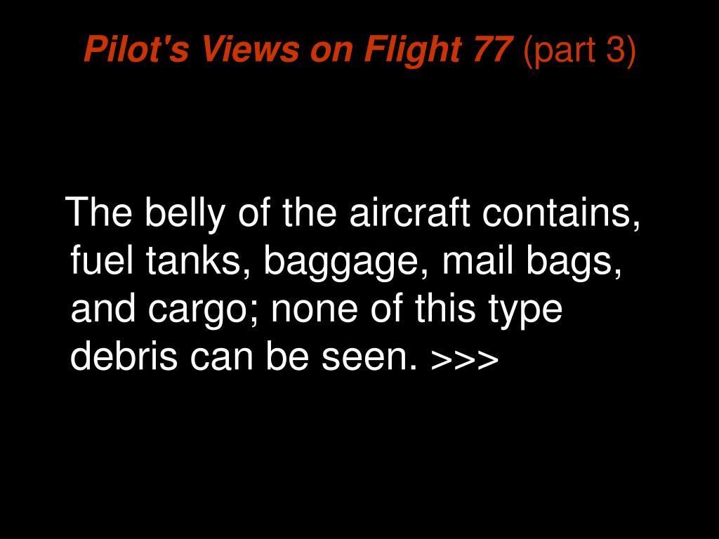Pilot's Views on Flight 77