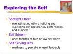 exploring the self
