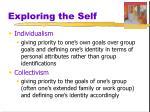 exploring the self1