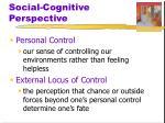 social cognitive perspective2