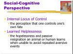 social cognitive perspective3