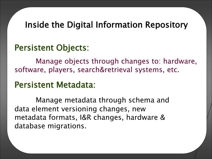 Inside the Digital Information Repository