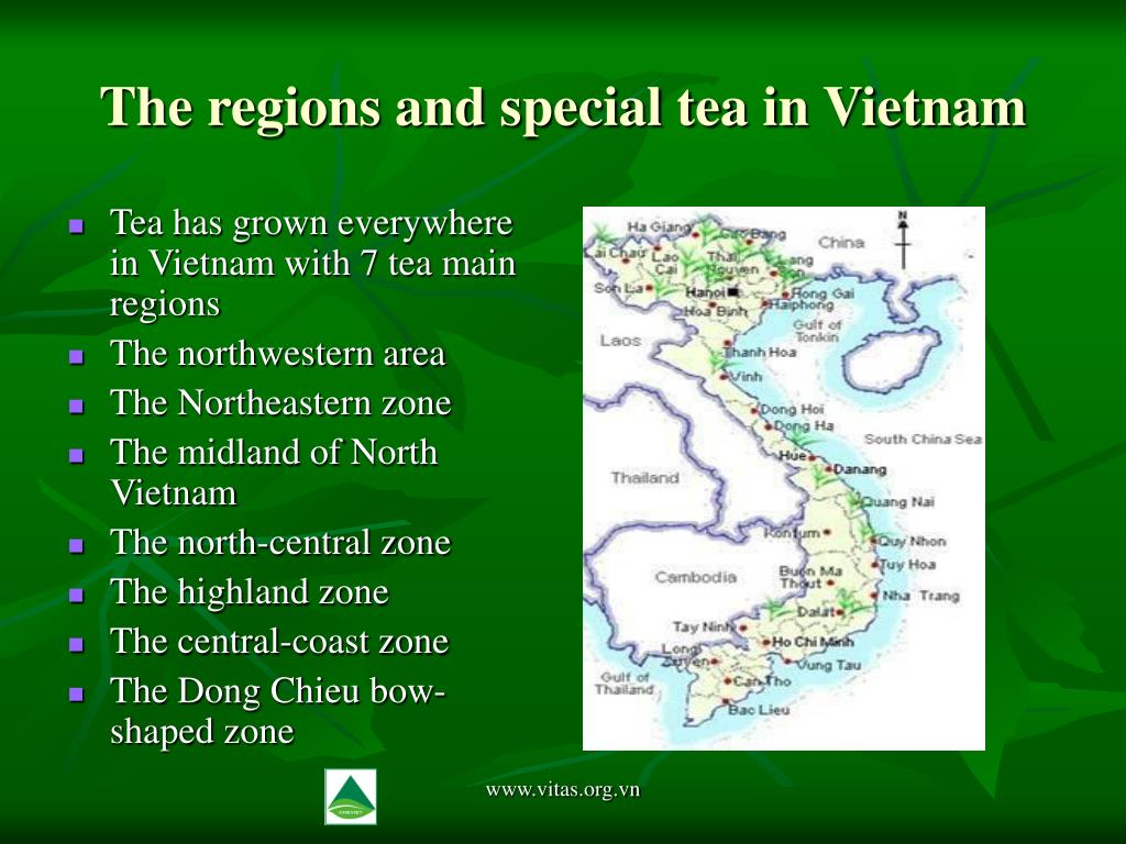 The regions and special tea in Vietnam