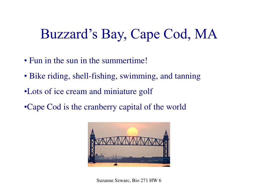 Buzzard's Bay, Cape Cod, MA