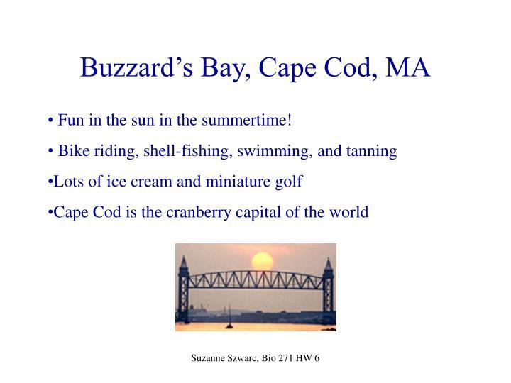 Buzzard s bay cape cod ma