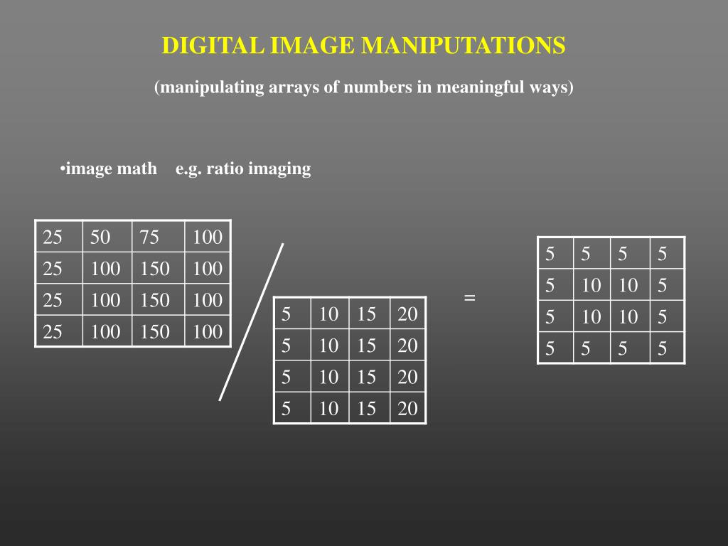 DIGITAL IMAGE MANIPUTATIONS