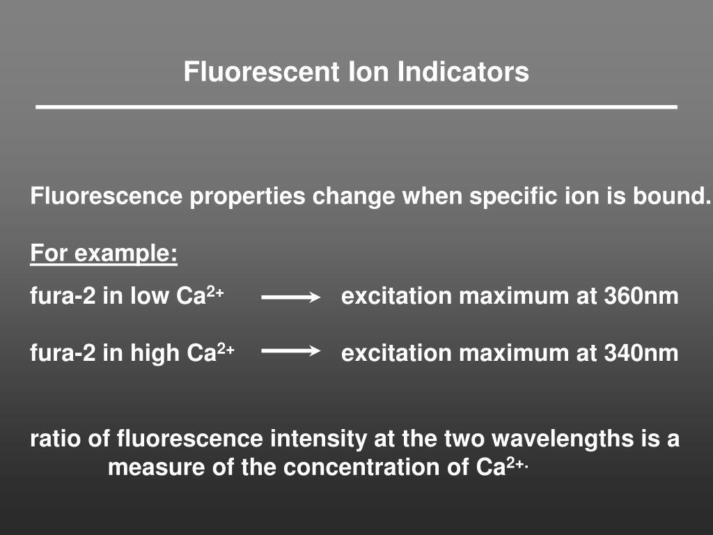 Fluorescent Ion Indicators