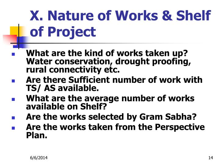 X. Nature of Works & Shelf of Project