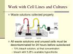 work with cell lines and cultures21