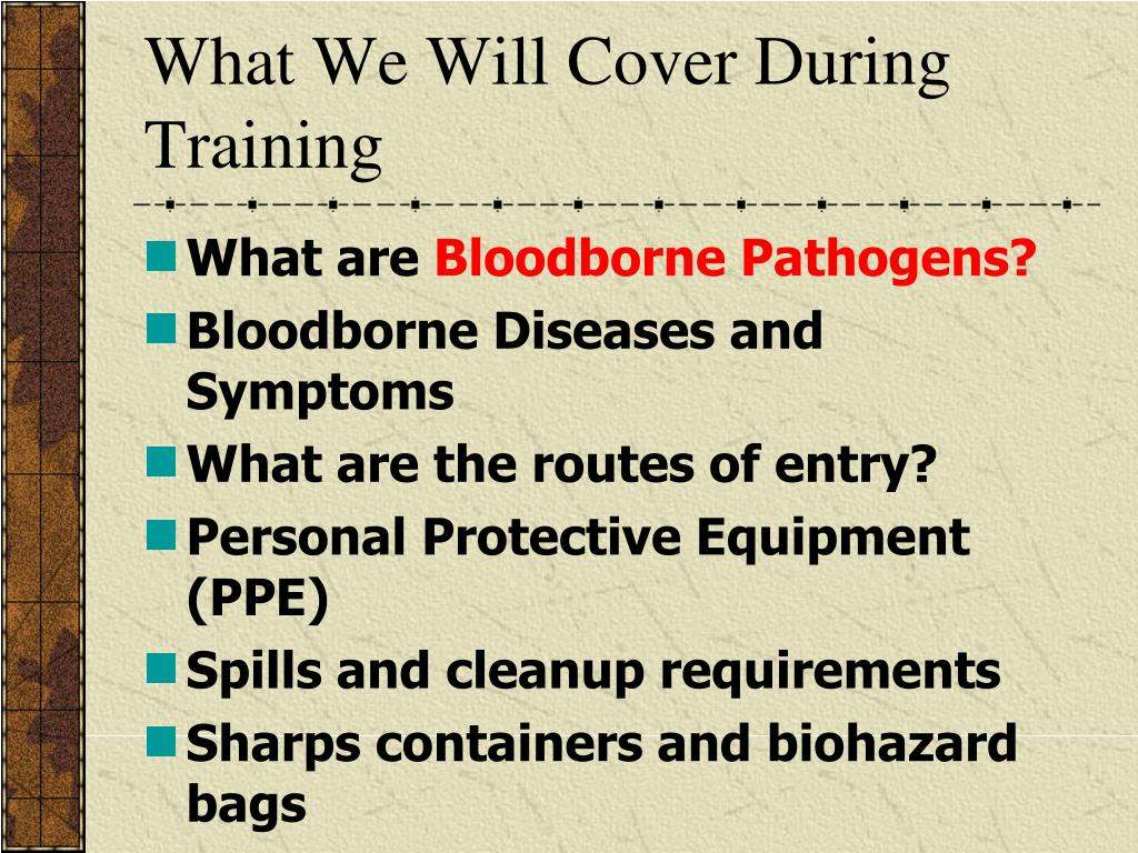 What We Will Cover During Training
