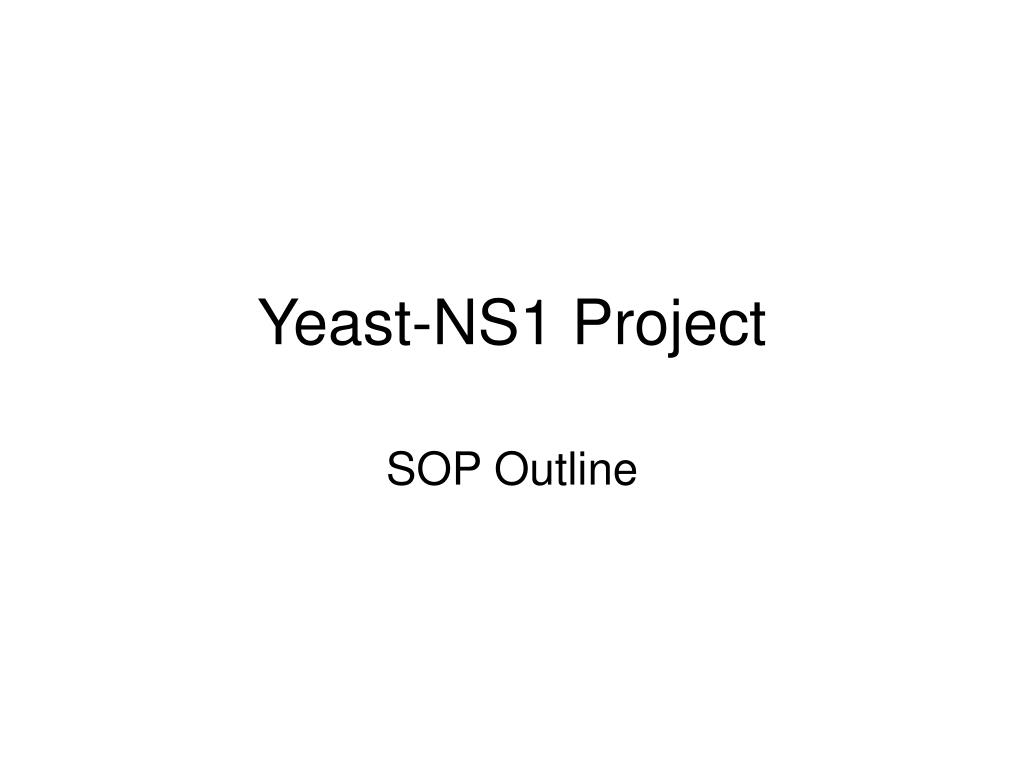yeast ns1 project l.