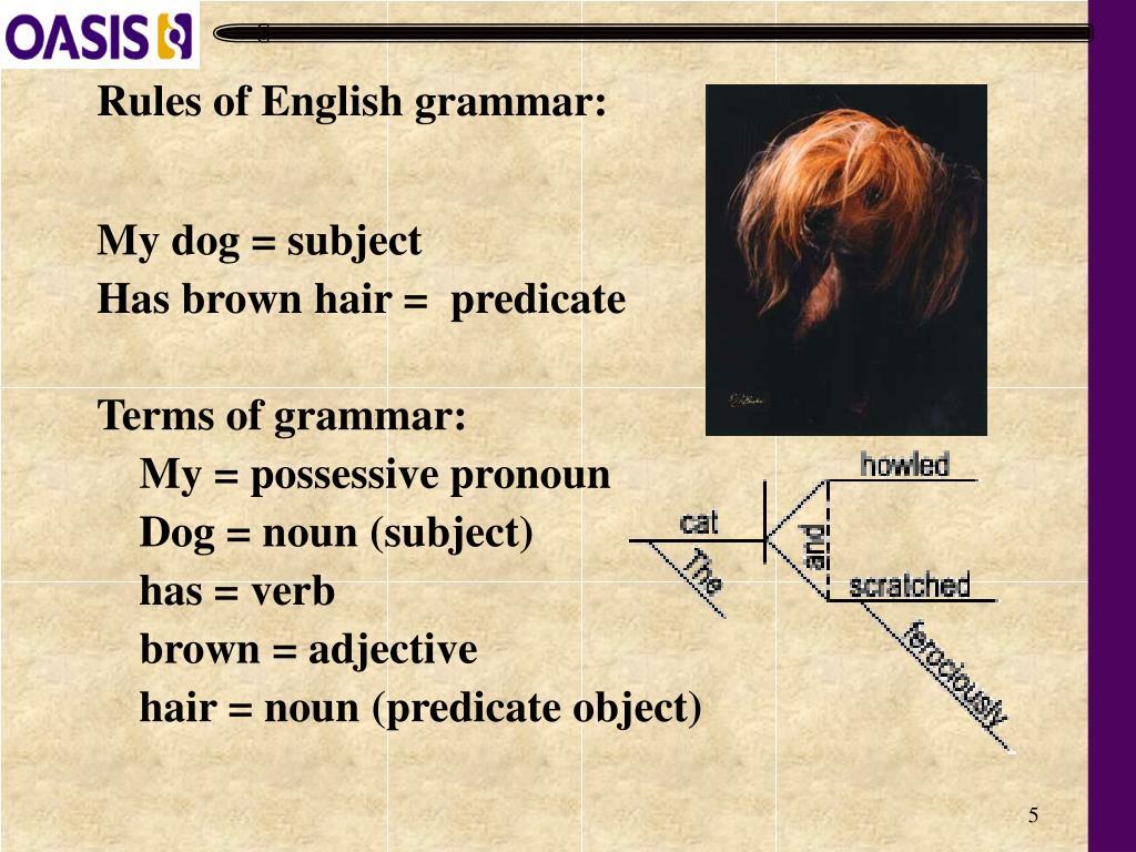 Rules of English grammar:
