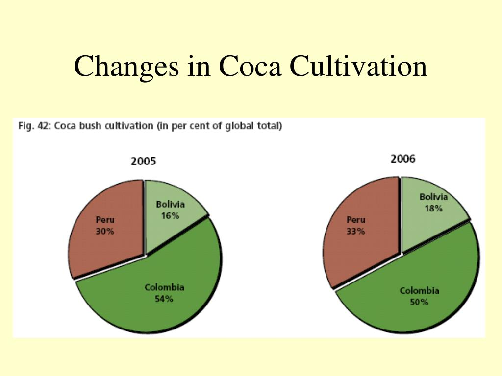 Changes in Coca Cultivation