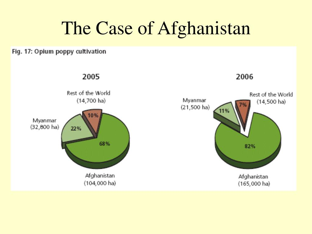 The Case of Afghanistan