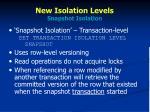 new isolation levels snapshot isolation