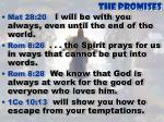 the promises8