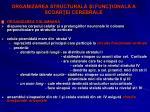 organizarea structural i func ional a scoar ei cerebrale3