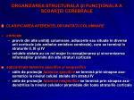organizarea structural i func ional a scoar ei cerebrale4