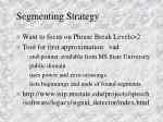 segmenting strategy