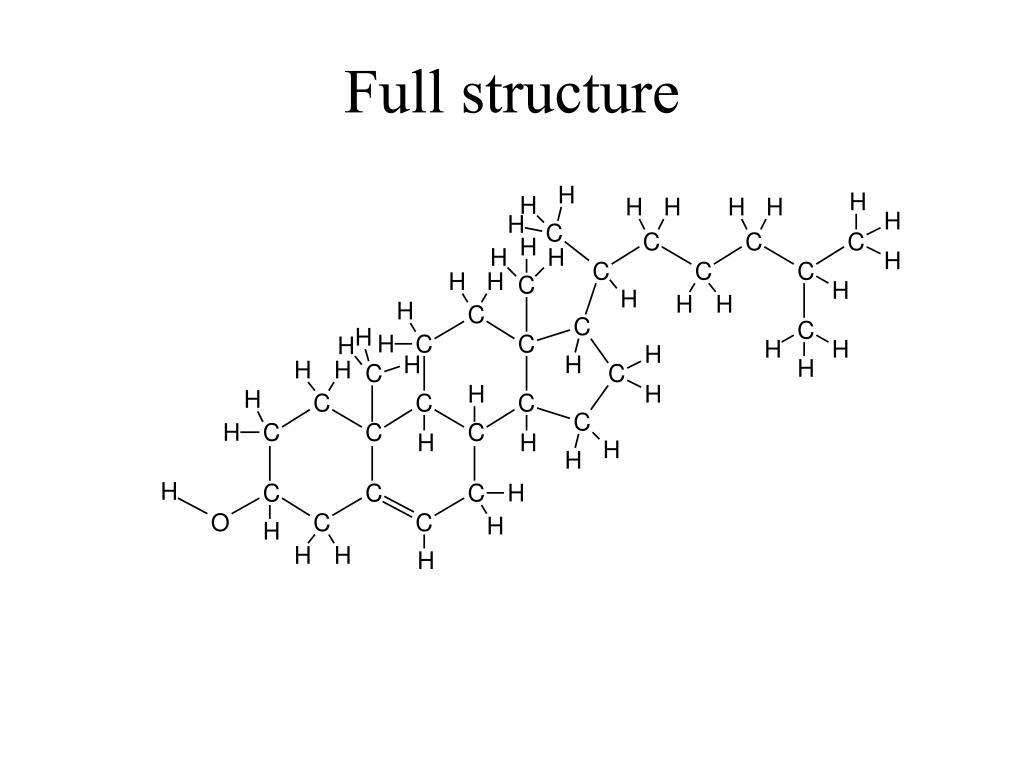 full structure l.