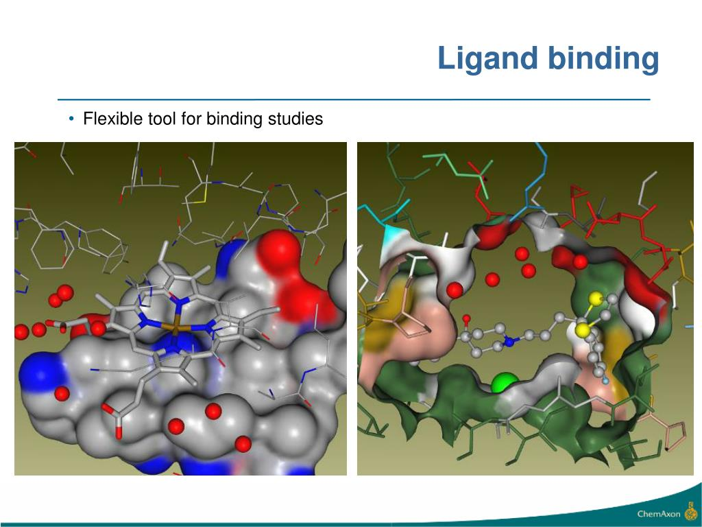 Ligand binding