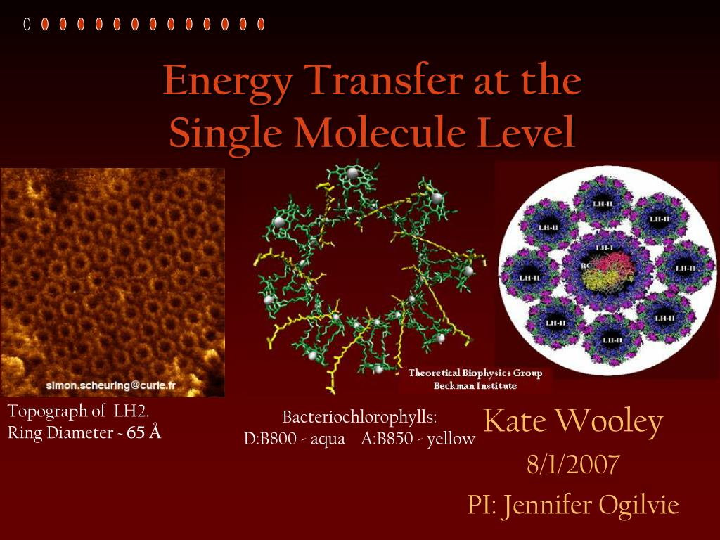 energy transfer at the single molecule level l.
