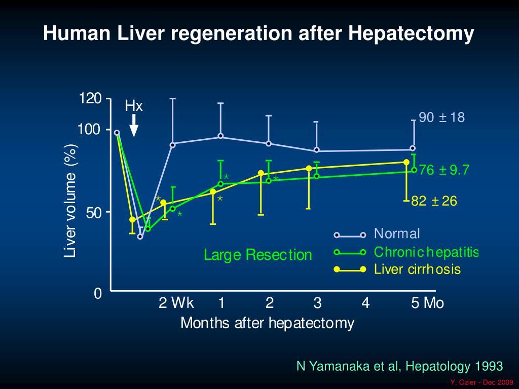 Human Liver regeneration after Hepatectomy