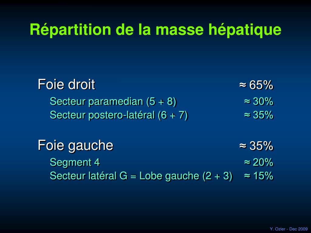 Répartition de la masse hépatique