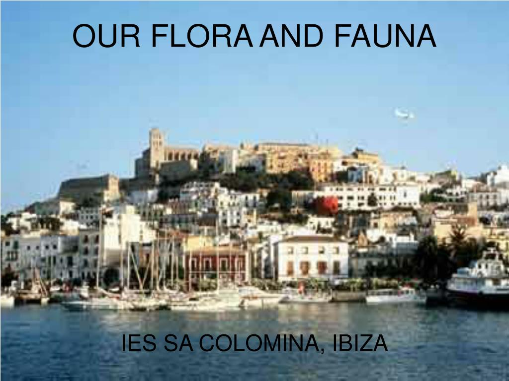 our flora and fauna l.