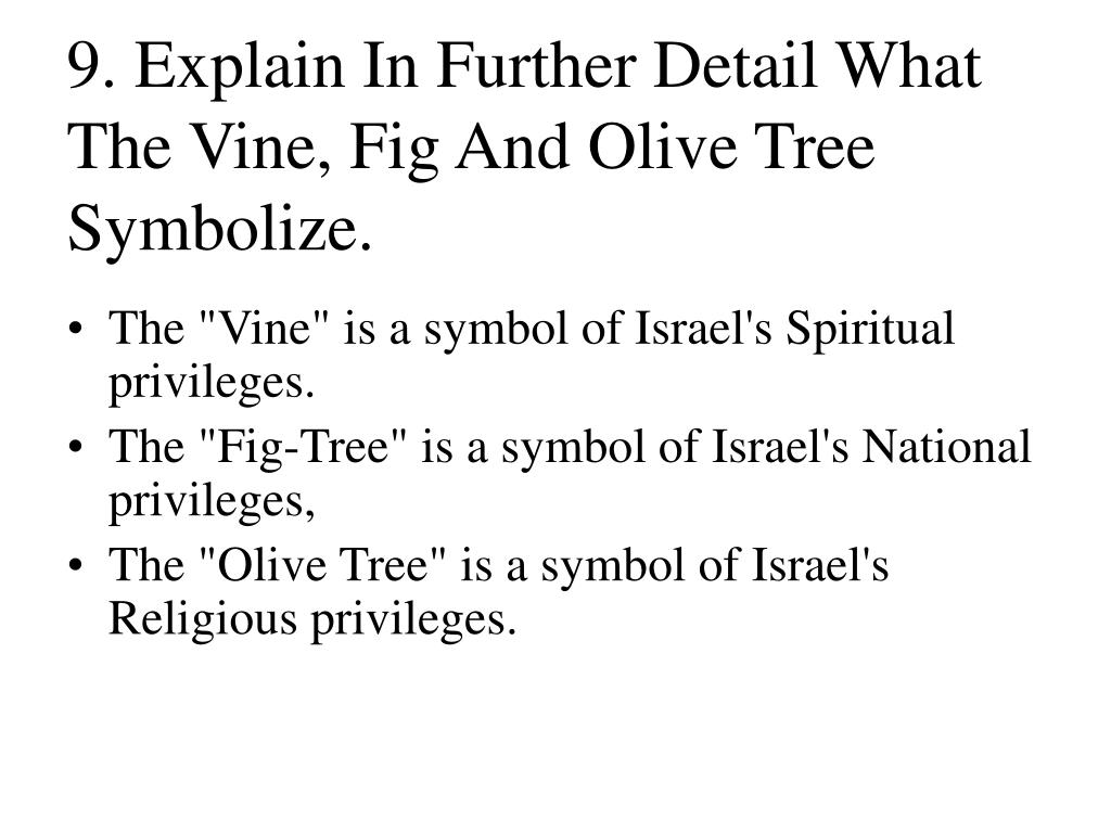 9. Explain In Further Detail What The Vine, Fig And Olive Tree Symbolize.