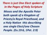 there is just one elect spoken of in the pages of holy scripture