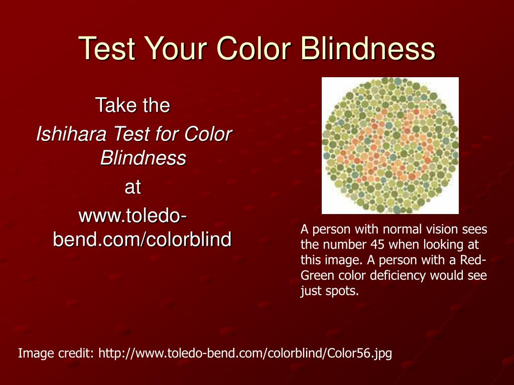 Test Your Color Blindness