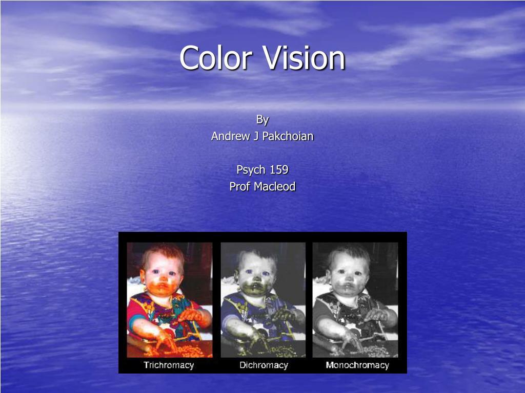 color vision l.