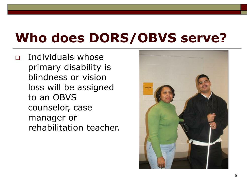 Who does DORS/OBVS serve?
