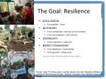 the goal resilience