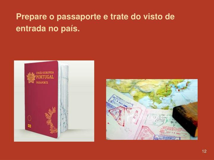 Prepare o passaporte e trate do visto de entrada no país.
